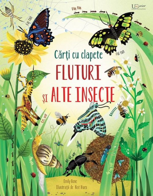 Fluturi și alte insecte - carte cu ferestre Usborne - Editura Univers Enciclopedic