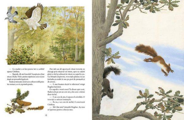 Copacul meu, de Gerda Muller – Editura Frontiera