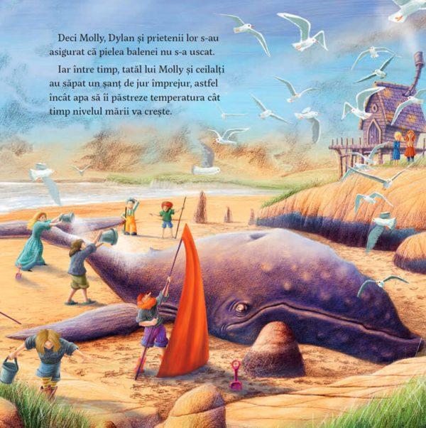 Molly și balena, de Malachy Doyle și Andrew Witson – Editura Nomina
