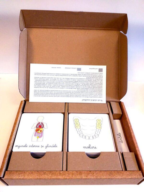 Lecții Montessori – Carduri educative Anatomie – Sistemul digestiv – Colectia Tiki-Tan – Smart Games