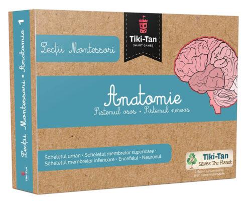 Lecții Montessori - Carduri Anatomie - Sistemul osos • Sistemul nervos - Tiki-Tan