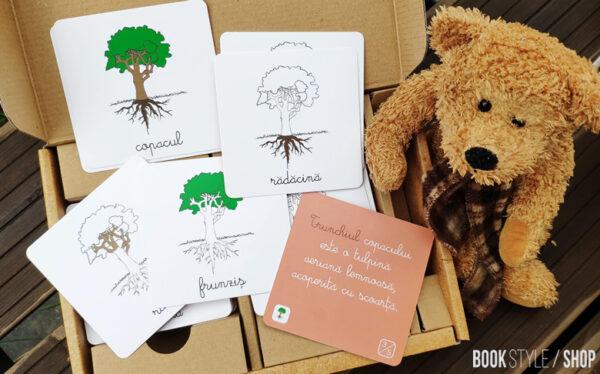 lectii-montessori-botanica-smart-games-tiki-tan-carduri-educative-1