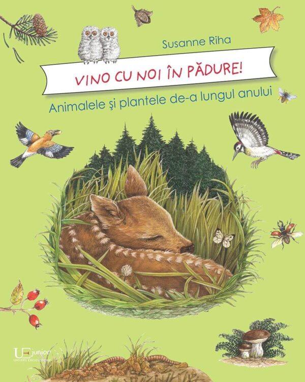 Vino cu noi prin pădure! Animalele și plantele de-a lungul anului - Susanne Riha - Univers Enciclopedic