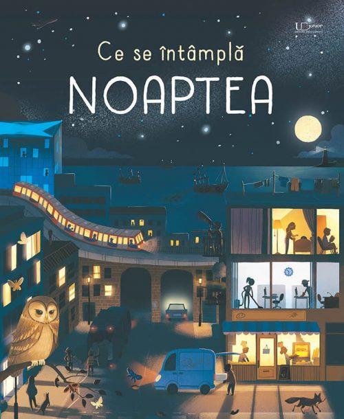 Ce se întâmplă noaptea? - Usborne română - UEJ