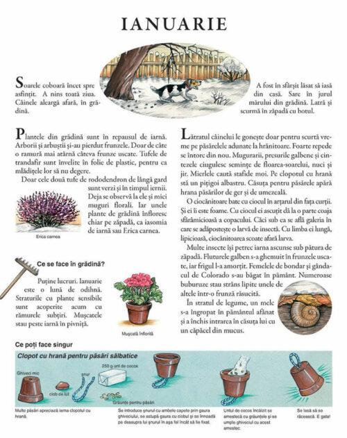 Un an în grădina mea – Susanne Riha – Univers Enciclopedic Junior